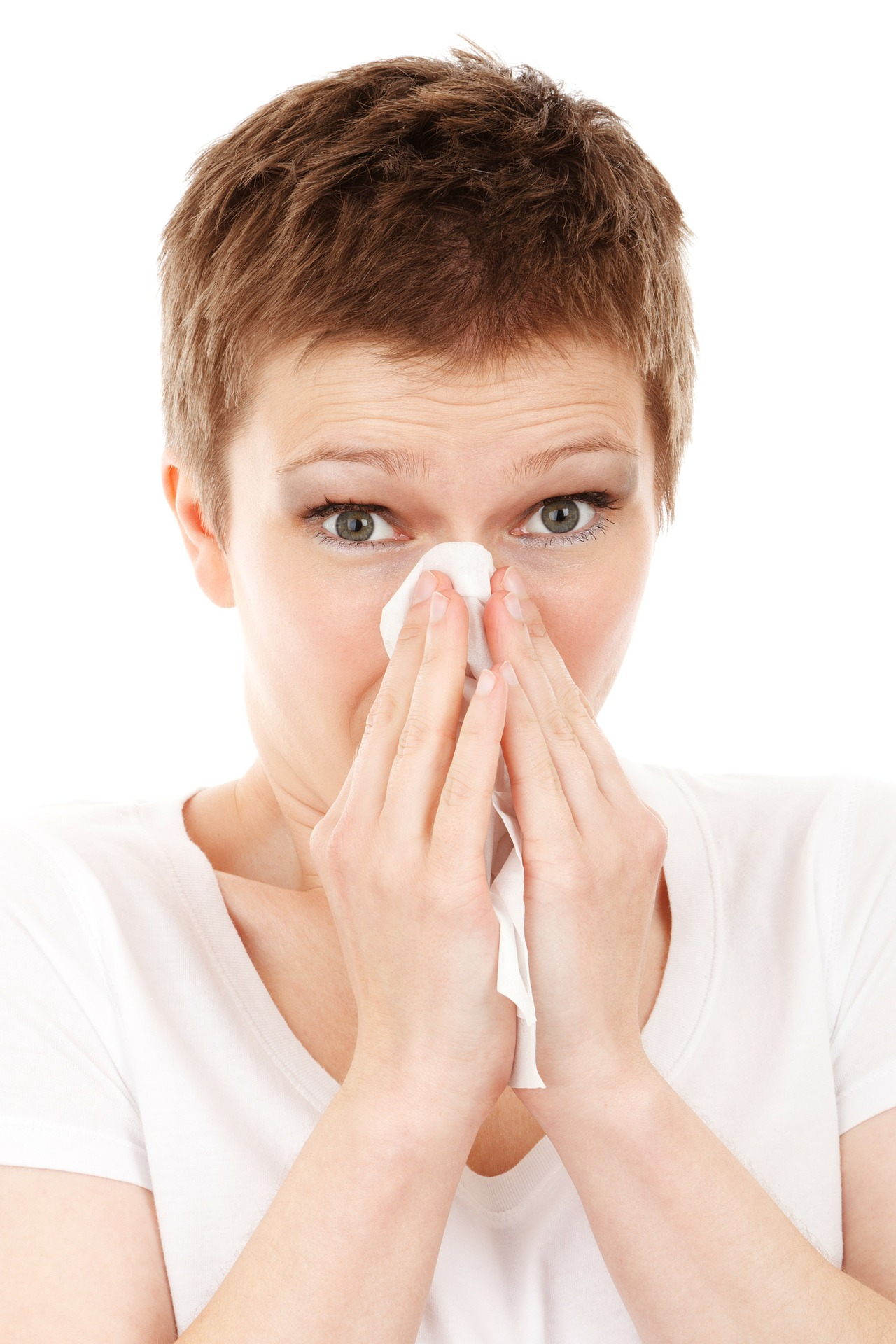 allergy-dust-mites
