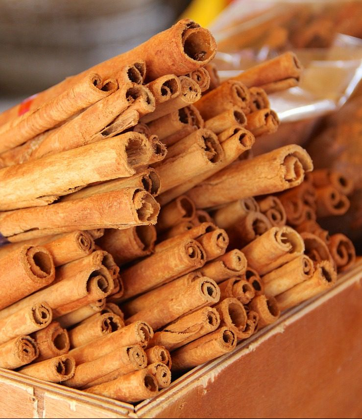 cinnamon-spice-vacuum-cleaner