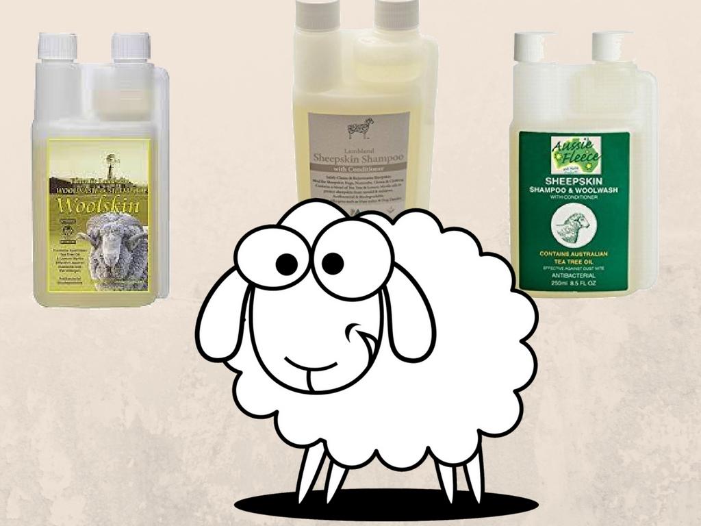 sheepskin-shampoo