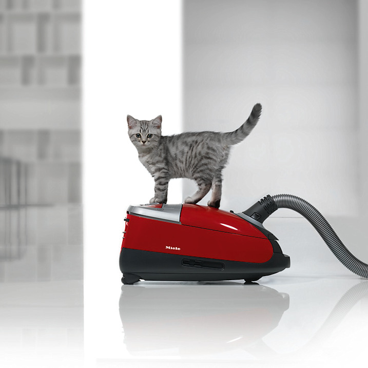 The Best Vacuum Cleaner For Pet Hair Smart Vac Guide
