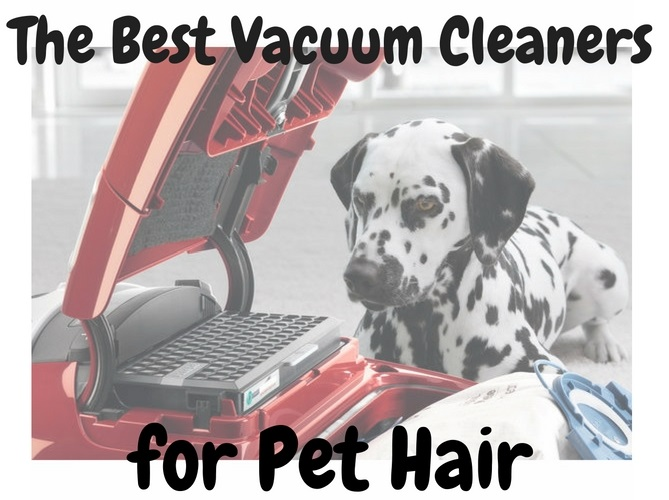 the-best-vacuum-cleaner-for-pet-hair