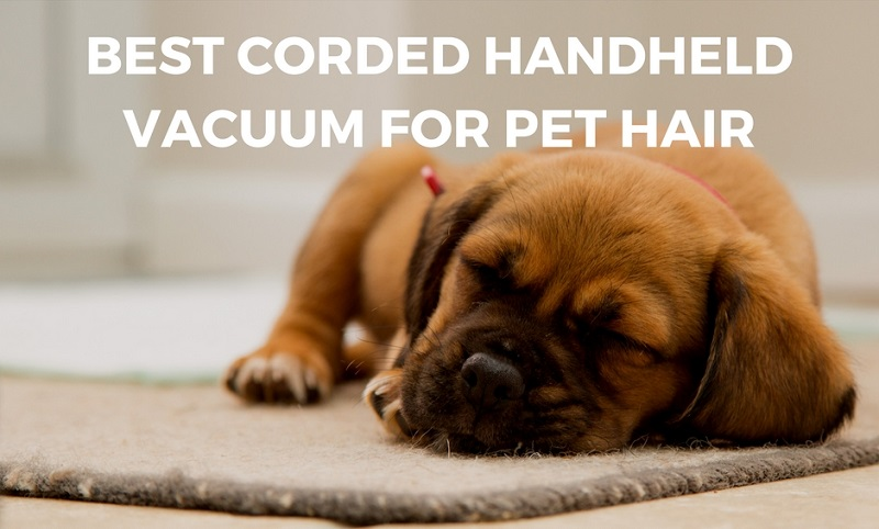 What is the Best Corded Bagless Handheld Vacuum Cleaner for Pet Hair?