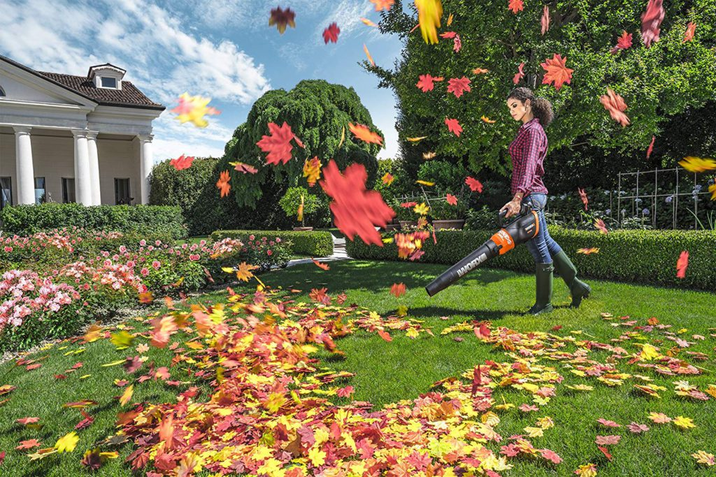 Best-Mulchers-Leaf-Blower-10
