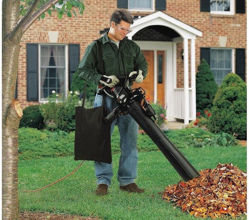The Best Leaf Blower For Pine Needles 2019 Smart Vac Guide