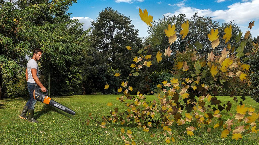 Best-Mulchers-Leaf-Blower-8