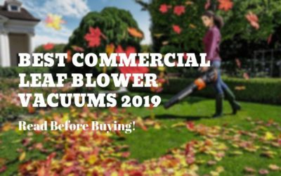 5 Best Commercial Leaf Blower Vacuums To Tackle Dead Leaves & Debris (2019)