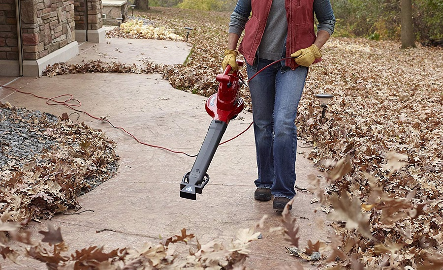 The Best Leaf Blower For Pine Needles 2020 Smart Vac Guide