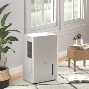 Best-Dehumidifier-and-Air-Purifier-Combo