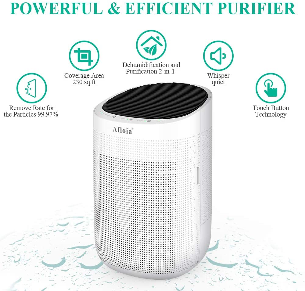 Dehumidifier-and-Air-Purifier-in-one